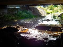 Drought times (Ostravak83) Tags: ostrava nikoncoolpix 2018 svinov potok creek porubka podzemí underground most bridge voda water sucho drought tráva grass stín shadow světlo light nedostatekvody lackofwater dryseason