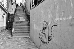 """Dump Your Guy"" (Douguerreotype) Tags: sverige monochrome people blackandwhite sweden street stockholm mono streetart city graffiti urban wall bw"