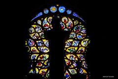 Vitraux, Cathédrale de Troyes (jpto_55) Tags: vitraux xe1 fuji fujifilm fujixf55200mmf3548rlmois aube champagne france cathédraledetroyes