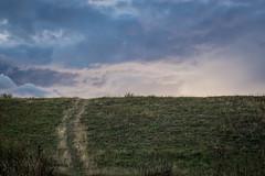 DSCF8750-2018.jpg (www.altglas-container.de) Tags: duisburg landscape landschaft way himmel weg sky rheinwiesen rheinhausen asterlagen clouds