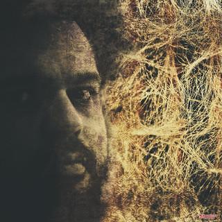 Neurotransmissions of a Creative Mind