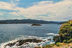 Paisaje marino (ninestad) Tags: maraguaespumarocasnaturalezaverdetexturascielonubespaisajemarinacantábrico galicia lugo