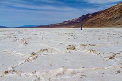 Badwater, Death Valley (Jill Clardy) Tags: california deathvalley nationalpark northamerica usa desert 20120305img9493 badwater basin salt national park sink salts below sea level hot white blinding