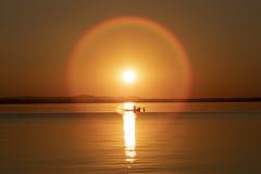Circle of protection (Cristiano Pelagracci) Tags: sunset nature lake trasimeno water