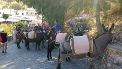 IMG_20180912_112912893 (Pat Neary) Tags: rhodes september 2018 lindos
