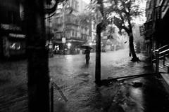Monsoon in the city (Street and fine art by Manobihangam) Tags: rain city monsoon kolkata mood