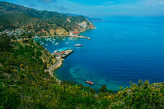 """Avalon, Catalina Island (Jeremy Thomas Photography) Tags: avaloncatalinaislandavalon catalinaisland outside outdoor outdoors ocean sea beach water beautiful pretty gorgeous stunning amazing whoa wow cool light lights lighting color colors colorful sony alpha mirrorless """"a7r mark iii"""" """"sony a7r hd high def definition raw lightroom 3 full frame digital exposure prime fixed ef 35mm 35 l f14 usm lens wide angle bokeh dof quality fijizzle sharp portrait fov"""