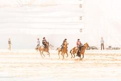 Kök-börü // Kyrgyzstan (Demipoulpe) Tags: بزکشی traveladdict travellife traveltheworld travelblog horsephotography travels traveldiaries travelphoto globetrotter travelblogger traveller monochrome bnw bw monoart bwlover monochromatic wanderlustnoir horsebackriding igersbnw instablackandwhite kyrgyzstaninstabw nomadgames2018 blackandwhitephotography monotone спорт sports