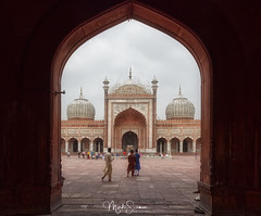 The mosque (marko.erman) Tags: history religion india standstone red marble courtyard terrace perspective specular bâtiment extérieur outdoors mosquée building islam culte cult tour arche entrance architecture newdelhi jamamasjid