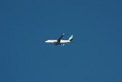 C-GWSQ Boeing 737-7CT Westjet (corkspotter / Paul Daly) Tags: cgwsq boeing 7377ct w b737 37091 3134 l2j apem c080a5 wja ws westjet 2009 n1786b 20091221 kiah iah houston intercontinental