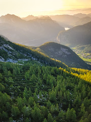 View from the cable car at Obertraun (oddwh) Tags: hallstatt obertraun cable car mountains austria landscape sunset oneplus 5t pine trees alps dachstein salzkammergut
