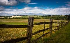 Weathered (Phil-Gregory) Tags: hardwickhall derbyshire bolsover fence sky gree nikon tokina1120mmatx tokina wideangle ultrawide d7200 1120mmproatx11 countryside old nationaltrust