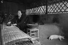 Cooking at Cu Chi (Andrea Rizzi Esk) Tags: tunnels complex cu chi vietnam travel people work job tradition food cat animal black white bw 2018 d750 nikon