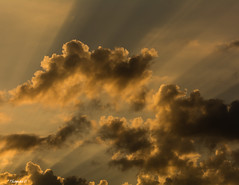 Sun Rays Before the Dusk Settles (that_damn_duck) Tags: clouds cloud nikon nature sunrays sundown sunset dusk sky