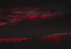 Red evening .. sunset (Julie Greg) Tags: sunset sky colours red canon clouds england trees