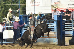 "Baker County Tourism – basecampbaker.com 47226 (Base Camp Baker) Tags: oregon ""easternoregon"" ""bakercountytourism"" basecampbaker ""basecampbaker"" ""bakercounty"" rodeo cowboys ""bakercitybroncandbullriding"" ""bakercity"" ""oregonrodeo"" ""minersjubilee"" oregonrodeo ramrodeo traveloregon travel tourism roughstock rodeolife bulls bullriding"