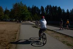 Biking at Stanley Park. (marcella.cavelli) Tags: canada britishcolumbia alberta squamish whistler banff jasper clearwater sky falls tree hike hiking trail trip snow lake wood ab bc