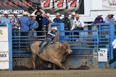 "Baker County Tourism – basecampbaker.com 47239 (Base Camp Baker) Tags: oregon ""easternoregon"" ""bakercountytourism"" basecampbaker ""basecampbaker"" ""bakercounty"" rodeo cowboys ""bakercitybroncandbullriding"" ""bakercity"" ""oregonrodeo"" ""minersjubilee"" oregonrodeo ramrodeo traveloregon travel tourism roughstock rodeolife bulls bullriding"