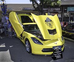 (jonporter94087) Tags: losaltoscorvettespectacular santaclaracorvettes chevroletcorvette