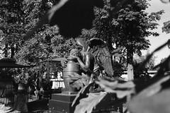 The Necropolis of the Donskoy Monastery (nonnull) Tags: moscow russia necropolis nikonlitetouchzoom120edaf kodakprofessionaltrix400 filmphotography filmphoto filmisnotdead filmtype135 film analogphotography expiredfilm barhatovcom sredafilmlab pakonf235 blackandwhite noiretblanc bnwfilm bnwmood bnw artinbw bwfp bw ru sculpture gravestone art tomb tombstones mood graveyard cemetery noir donskoymonastery dark d76 grain angel msk trix400 400tx kodak россия москва некрополь стараяфотопленка пленка фотопленка просрочка чб чбфото скульптура 2018 городскиезаметки город чернобелое настроение