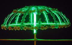 ganga seva nidhi (4) (kexi) Tags: varanasi benares india asia green lights decoration gangasevanidhi samsung wb690 february 2017