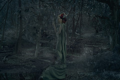 The Poison Ivy (katelionis) Tags: poison ivy woman girl female myth mythology mythological redhair greendress story storytelling forest bush woods woodland tree trees cloud fog twilight night rise rising plant plants green dark darkness connection earth ground birth rebirth growth beauty cycleoflife assurance