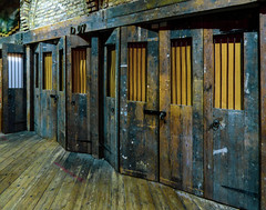 Shutting the Stable Doors (Steve Taylor (Photography)) Tags: thestables d07 padlock doors architecture blue brown yellow uk england london camden gb greatbritain floorboards
