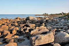 Low Tide (jonfromnsca) Tags: lowtide intertidalzone saltwater aspotoganpeninsula stmargaretsbay stump sand outcrop point interface boulder seaweed