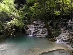 Turquoise water of Krushuna stream in Maarata nature park, Bulgaria (cod_gabriel) Tags: krushuna maarata krușuna bulgaria stream râu forest pădure padure deciduous deciduousforest păduredefoioase крушуна turcoaz turquoise