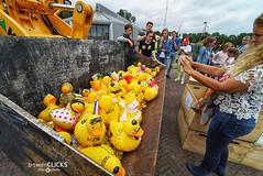 Off the ducks ... (Btwienclicks) Tags: 2018 event familyfun ducks snapshot race hellevoetsluis entertainment