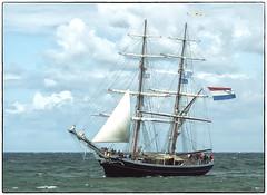 180826-1 (sz227) Tags: morgenster traditionsschiff traditionssegler segelschiff brigg ostsee warnemünde rostockwarnemünde hansestadtrostock sz227 zackl sony sonya230