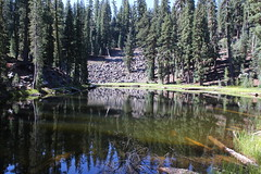 Small little pond, next to the trail (rozoneill) Tags: lassen volcanic national park california hiking twin lakes upper lower cluster pacific crest trail peak echo lake