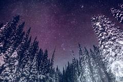 Canadian Rockies /Emerald lake / Yoho national park (Mountain lakes dreaming) Tags: canadianrockies yohonationalpark skyshots purple purpletones nightphotography