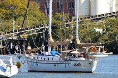 800_5467 (Lox Pix) Tags: queensland qld australia architecture crane catamaran river rivercat boat brisbane bird bridge building brisbaneriver boats ship yacht loxpix landscape rivertraffic