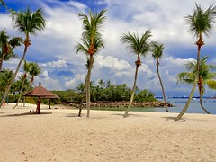 Sentosa island, Singapore (Veselina Dimitrova) Tags: beautiful clouds bluesky travel travelling relax trip vacation visit weekend sun sentosaisland sentosa palmtrees palms singapore summer tropical