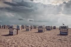 September (u c c r o w) Tags: grömitz baltic sea germany beach seaside beachchair sand sunset rain clouds landscape seascape seagull bird water september autumn uccrow