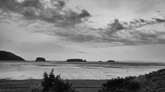 Five Islands (halifaxlight) Tags: canada novascotia bayoffundy cumberlandcounty fiveislands sea islands sky clouds lowtide beach bush bw