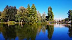 Ragyogó szeptemberi nyár (Szombathely) (milankalman) Tags: reflection summer sunshine