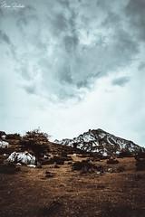 Lagos de Covadonga XXI (Álvaro Hurtado) Tags: nikon d7200 sigma naturaleza nature paisaje landscape asturias españa spain oviedo monte mount montaña mountain lagos lakes covadonga picos europa niebla fog mist árboles trees cielo sky nubes clouds