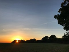 Sun Setting In The Trees (Marc Sayce) Tags: sundown sunset trees countryside fields ropley soke four marks hampshire summer autumn september 2018