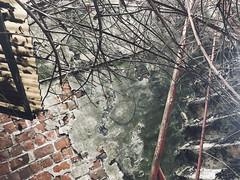 UE Doel 2018-20 (gabrielgs) Tags: doel verlaten verlatendorp belgie abandonedvillage ghosttown spookstad abandoned abandon abandonedplace urbanexploring urbex urbanexploration urbaineexplorers decay vergeten explorationurbaine graffiti vervallen