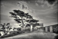 Burgh Island Hotel (Stephen Braund) Tags: hdr monochrome wideangle artdeco burghisland
