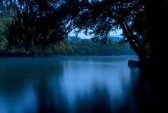 antes de romper el alba (Momoztla) Tags: mexico momoztla camecuaro michoacan lago amancer azul larga exposicion arbol contraluz reflejo sombra dia