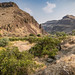 Lower Owyhee Canyon