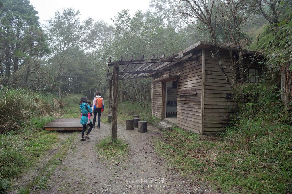 太平山翠峰湖環山步道 |走在泥濘的道路上,只為途中美景 | 宜蘭大同鄉66
