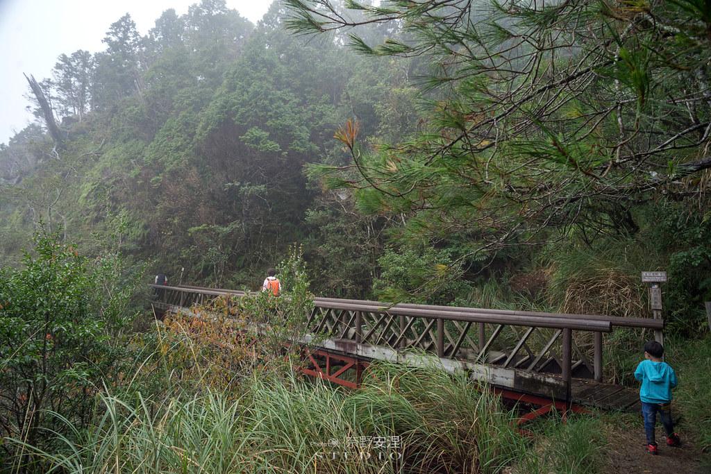 太平山翠峰湖環山步道 |走在泥濘的道路上,只為途中美景 | 宜蘭大同鄉64