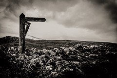 This way......... (jmiller35) Tags: blackclouds moody clouds stonewalls stone landscape blancoynegro bw blackandwhite signpost countryside england yorkshire