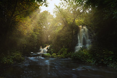 The Sounds of Waterfalls (Linn Jaw waterfalls) (Uillihans Dias) Tags: linnjawwaterfalls scotland waterfall river landscape nature rays trees