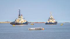 Switzer Brunel & Switzer Adira (Aliy) Tags: switzerbrunel switzeradira tug tugs tugboat tugboats boat boats thames gravesend tilbury river water two pair 2