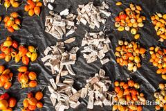 Enjoy the colour, and the taste (10b travelling / Carsten ten Brink) Tags: 10btravelling 2018 abengourou abenguru africa africaine african afrika afrique akan carstentenbrink cotedivoire elfenbeinkueste iptcbasic ivorian ivorycoast westafrica africain cmtb ivoirien ivoirienne market tenbrink